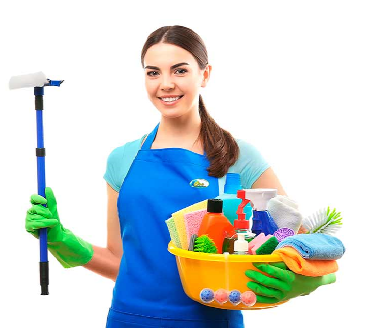 Santa monica house cleaners